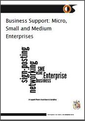 MSME report cover