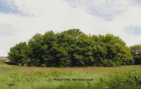 ring of oaks shirley