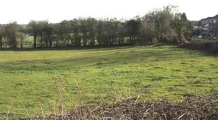 green field site 2