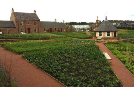 dumfries allotments