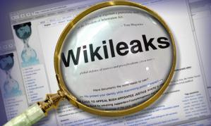 wikileaks graphic