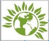 green party logo border