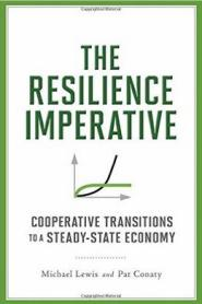 the resilience imperative cover