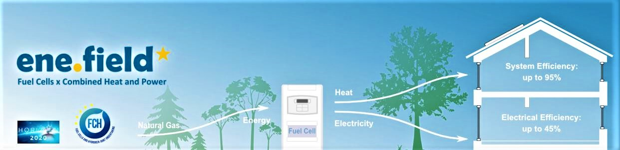 NEC: domestic CHP, fuelled by hydrogen, like buses, cars and